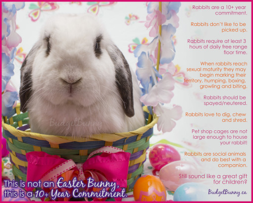 easter2016poster1